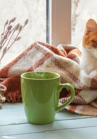 Transformă-ți casa într-un cuibușor călduros și confortabil!